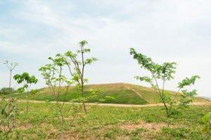 Solucao-ambiental-3